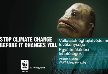 WWF - Vállalatok éghajlatvédelmi tevékenysége